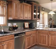 Hickory Cabinets Design Ideas Granite Countertop Backsplash Border - Backsplash tile ideas for granite countertops