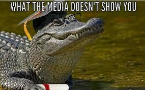 Alligator Memes - o 2016 disney resort alligator attack know your meme