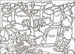 rainforest coloring pictures free coloring pictures