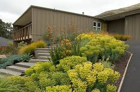 Plants For Front Yard Landscaping - front yard landscape ideas that make an impression