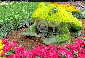 flower garden plans for beginners flower garden design ideas kerala designs galley kitchen small the