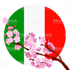 japanese cherry blossom on the background of the italian flag