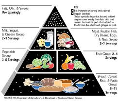 til that the original food pyramid given to the us govt by