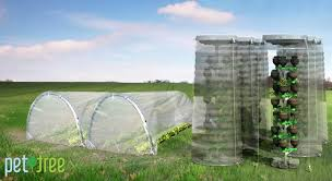 american managed to grow vegetables and fruits in plastic