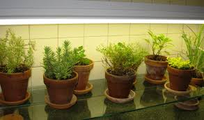 kitchen herb garden ideas kitchen herb garden pots i homes how to make kitchen herb
