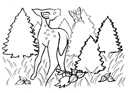 activity sheet colouring page