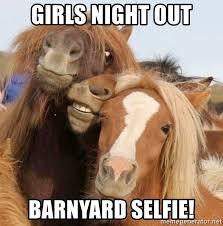 Girls Night Out Meme - girls night out barnyard selfie barnyard selfies meme generator