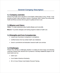 sample professional business plan 6 documents in pdf