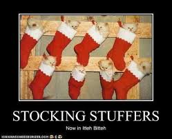 Stocking Meme - image 30687 itteh bitteh kitteh committeh know your meme