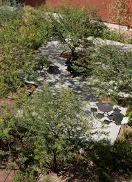 Arizona vegetaion images Asla 2010 professional awards sonoran landscape laboratory jpg