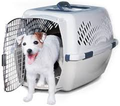 New Pet Taxi® & Kennel Cabs