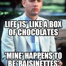 Life Is Like A Box Of Chocolates Meme - life is like a box of chocolates meme 28 images 25 best memes
