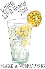 vodka tonic lemon 23 best drinks drinks images on pinterest drinking funny cards