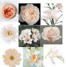 wedding flowers names names of wedding flowers wedding corners