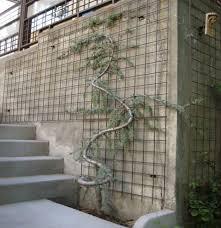 outdoor trellis designs wood trellis metal trellis and gardens
