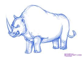how to draw a rhino step by step cartoon animals animals free