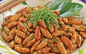 cuisine vietnamien top 5 plats atypiques à déguster au à vos baguettes