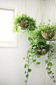 hanging planters out of metal bowls u2014love this click through for