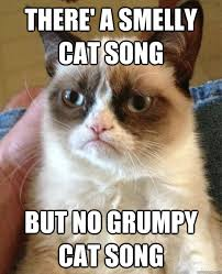 Memes Song - there a smelly cat song cat meme cat planet cat planet