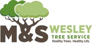 m s wesley tree service