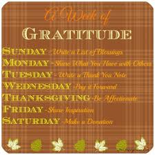 a week of gratitude happy balance