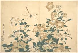 katsushika hokusai bellflower and dragonfly from an untitled