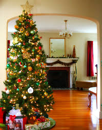 Red And Silver Christmas Tree Decorations Interior Interesting Design Classic Christmas Tree Ideas With