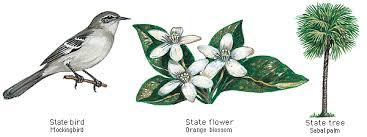 Flower And Bird - u s state by bird flower or tree slideshow quiz by masterkglas