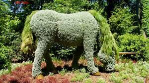 Atlanta Botanical Gardens Membership Amazing Living Sculptures At Atlanta Botanical Garden