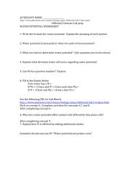 bench ph lab bench best dna lab ideas cell cycle activity