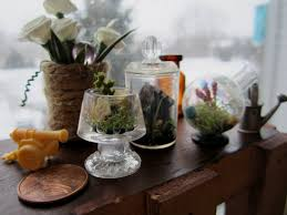 light bulb terrarium diy ideas inhabit zone