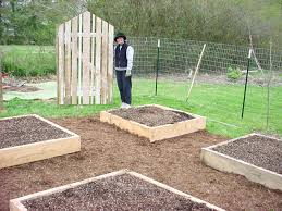Vegetable Garden Layouts by Collection Diy Vegetable Garden Ideas Photos Best Image Libraries