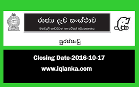 vacancies in timber corporation closing date 2016 10 17 iqlanka