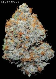 Superclosets by Types Of Weed Is The Nets Best Medical Marijuana Site Full Of Best