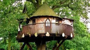 house pictures ideas tree house ideas treehouse deck tree house ideas c cbstudio co