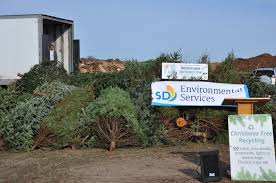 city of san diego christmas tree recycling clairemont times