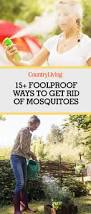 How To Get Rid Of Mosquitoes In Backyard by How To Prevent Mosquito Bites Best Ways To Get Rid Of Mosquitos