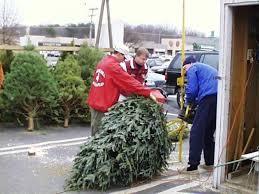 christmas tree fundraiser optimist club of greater vienna