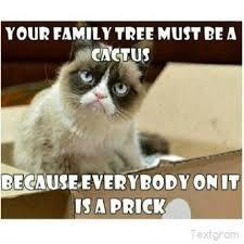 Unhappy Cat Meme - grumpy mom meme mne vse pohuj