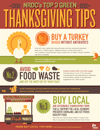 thanksgiving without turkey more important turkey day tips infographic
