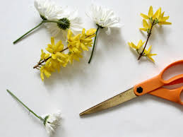 How To Make Boutonnieres How To Make A Groom U0027s Wedding Boutonniere How Tos Diy