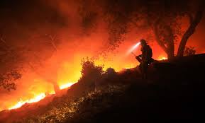 Wildfire Social Media App by Sonoma County Wildfires Frequently Asked Questions Useful