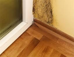 moisissure dans une chambre moisissure chambre cdaf humidité problème de moisissure sur mur