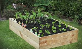 raised vegetable garden beds kits best idea garden