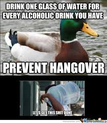 Hungover Meme - how to prevent a hangover by farb meme center
