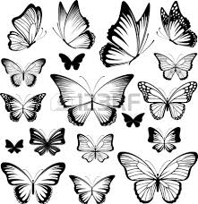 set of butterflies silhouettes isolated on white background in