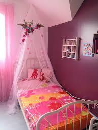 Chambre Petite Fille Princesse by Ciel De Lit Bebe Fille Pas Cher Indogate Com Chambre Princesse