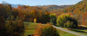 roan mountain state park u2014 tennessee state parks