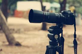 Photography Contract Template Free Family Hiring A Professional Photographer Consider These 3 Things First