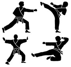 87 best karate images on martial arts kenpo karate